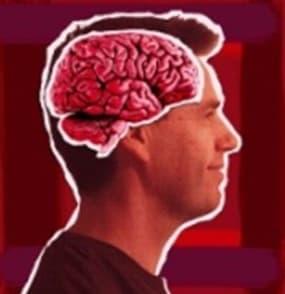 cervellsc10
